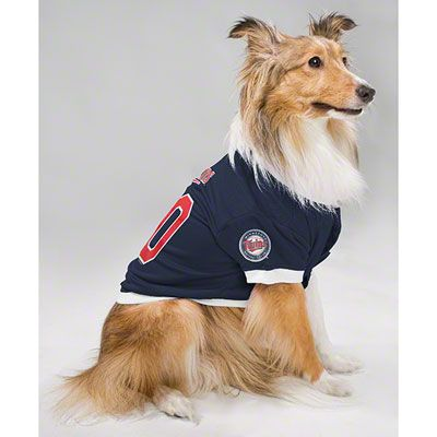 release date: c8831 bf0a2 Minnesota Twins Dog Jersey | This Is Twins Territory | Cubs ...