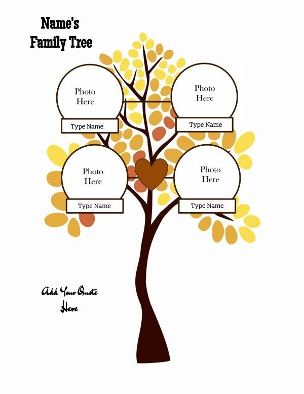 family tree maker family tree templates pinterest free family
