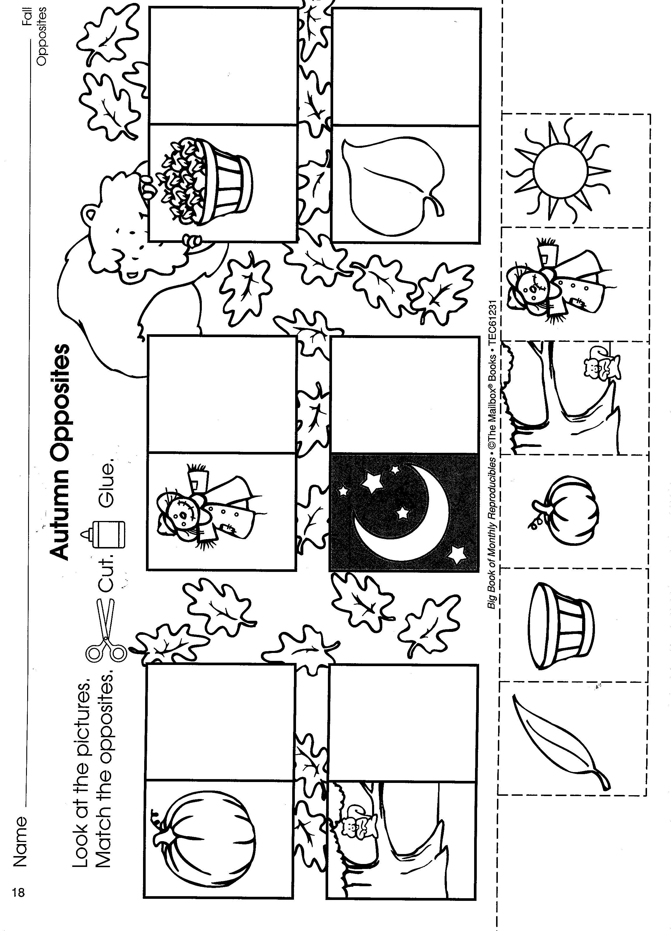 Worksheets The Mailbox Worksheets pin by natalie edgar on opposites theme pinterest preschool fall worksheet math ideas preschool