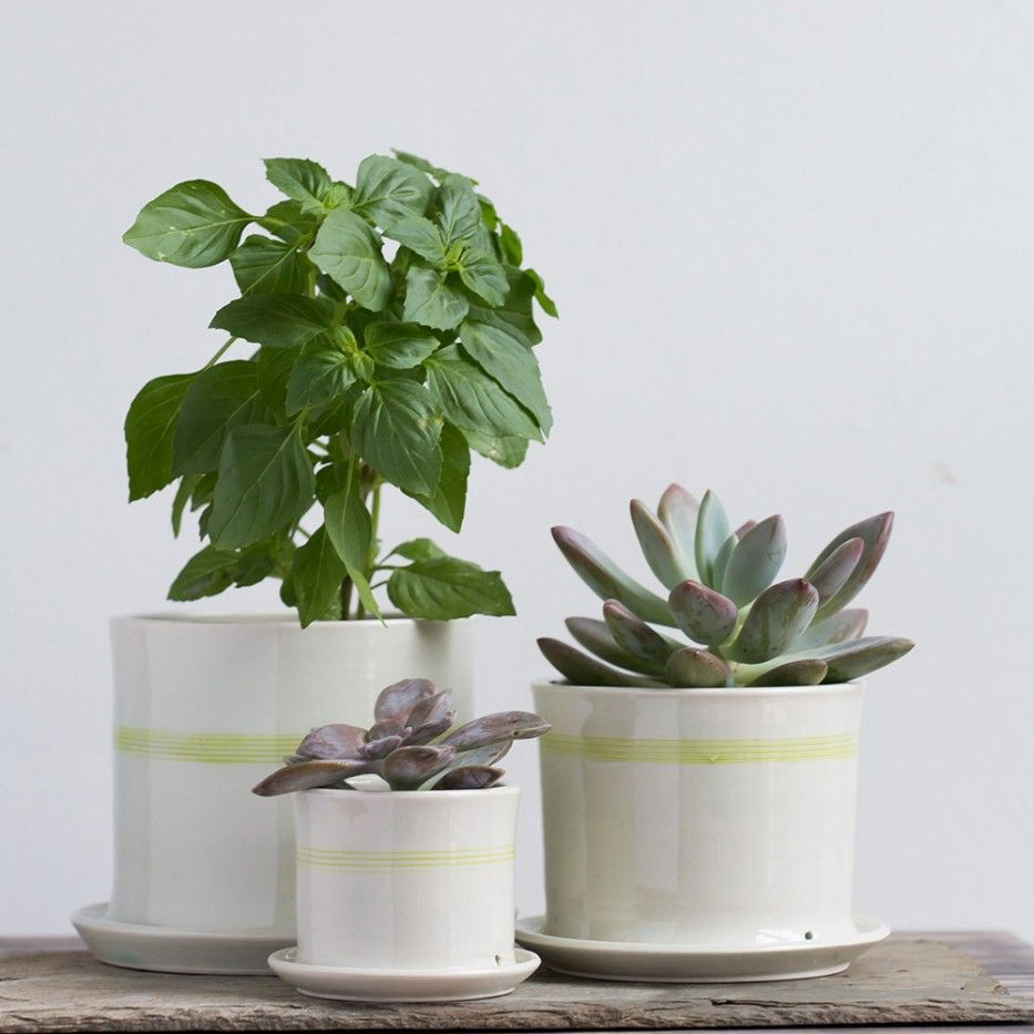 striped planters pottery rh pinterest de