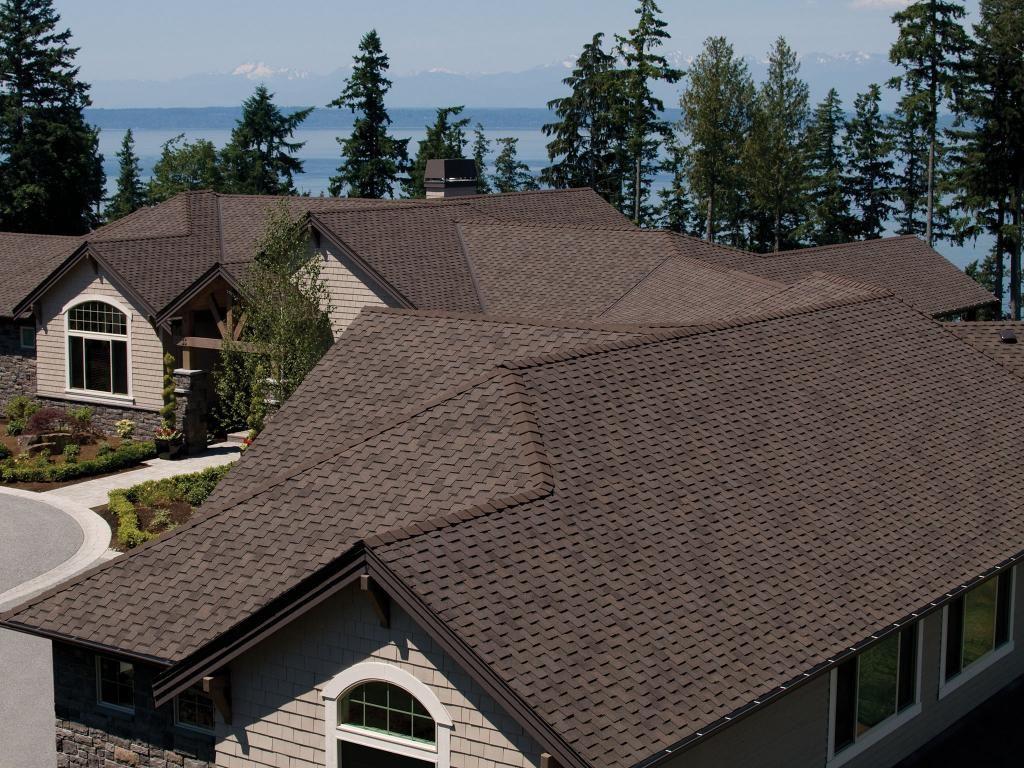 Oakwood Paramount Asphalt Roofing Shingles Pabcoroofing Roofing Roof Shingles Shingle Colors