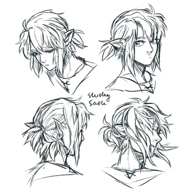 Link S Hair Legend Of Zelda Breath Of The Wild Legend Of