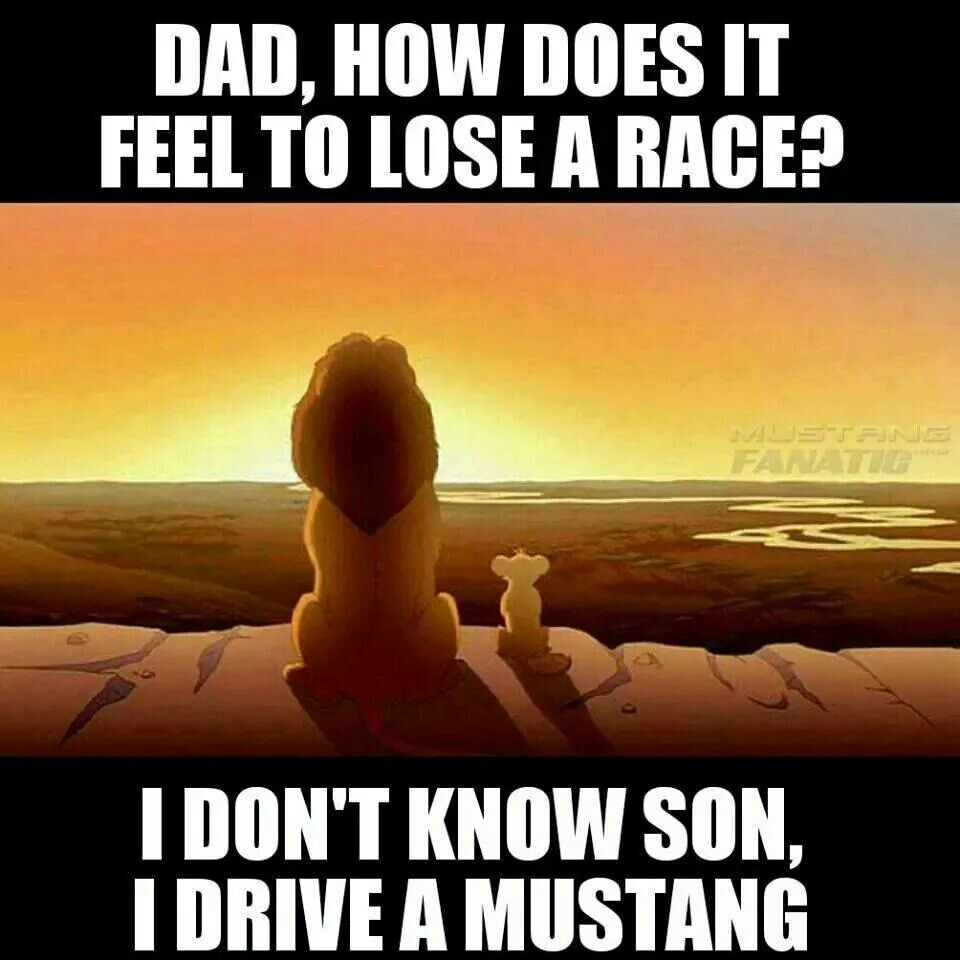 Mustang Quotes Muy Cierto Jajaja  Mustang Y Shelby 500  Pinterest  Mustang