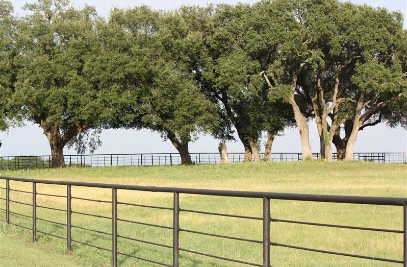 Pecan Bottom Ranch in Weatherford, Texas DFW Wedding