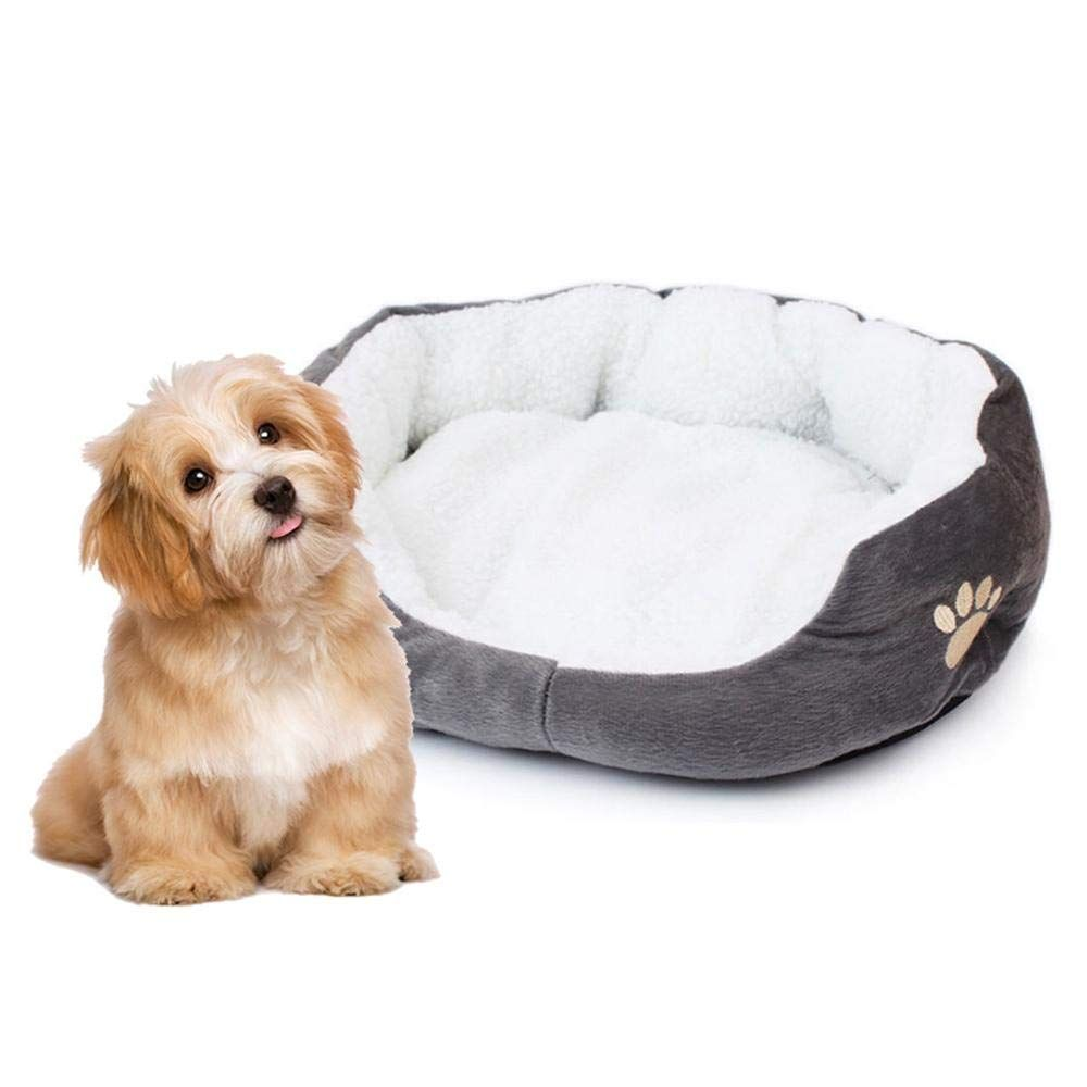 Foonee Cat Beds Clearance Dog Beds For Large Dogs Clearance Deluxe Pet Beds For Small And Large Dog And Cat Wonderful Of You To D Cat Bed Pet Beds Dog Bed