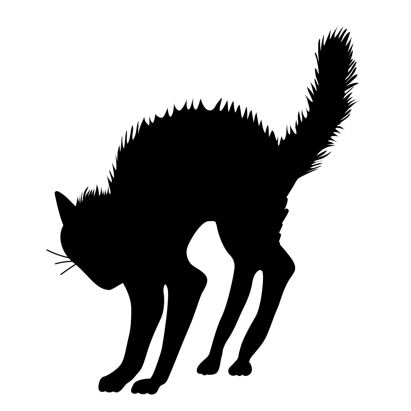 Angry Arched Scary Halloween Black Cat Silhouette Vinyl Wall Art Decal For Homes Offices Kids Rooms Nurseries Schools High Schools Colleges Universitie With Images Halloween Silhouettes Black Cat Halloween Halloween Cat
