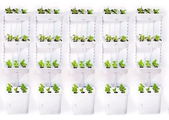 Grow Your Own A Hydroponic Ikea Hack Diy Indoor Growing System The Gardenist Apartment Therapy