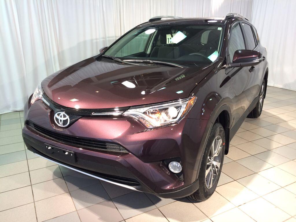 2016 Toyota Rav4 Xle In Black Currant Metallic Okay It S Purple Nevertheless Be Still My Heart