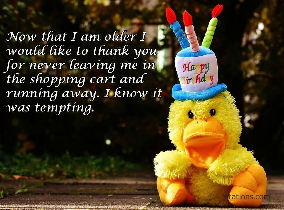 Happy Birthday My Love Msg In Hindi Birthday quotes for