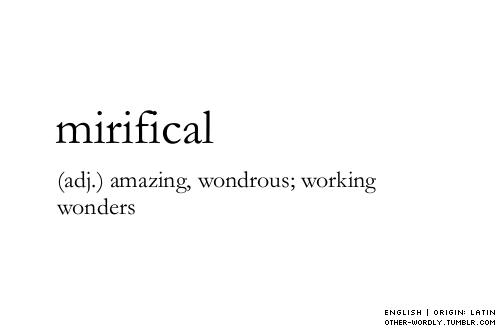 Mirifical - unused words | for the love of words | Words
