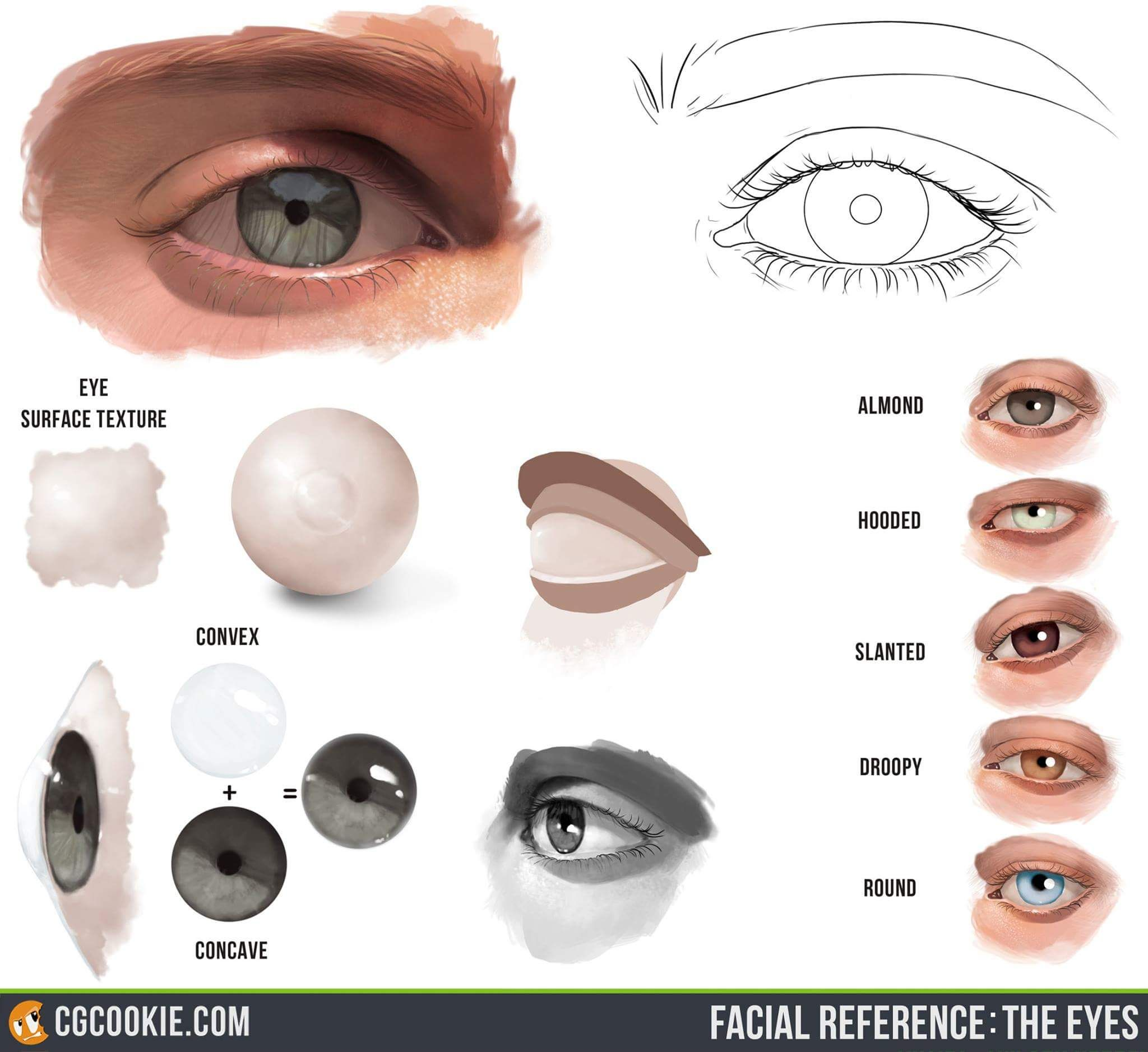 Eyes secrets. The Most Complete Drawing Course... http://the ...