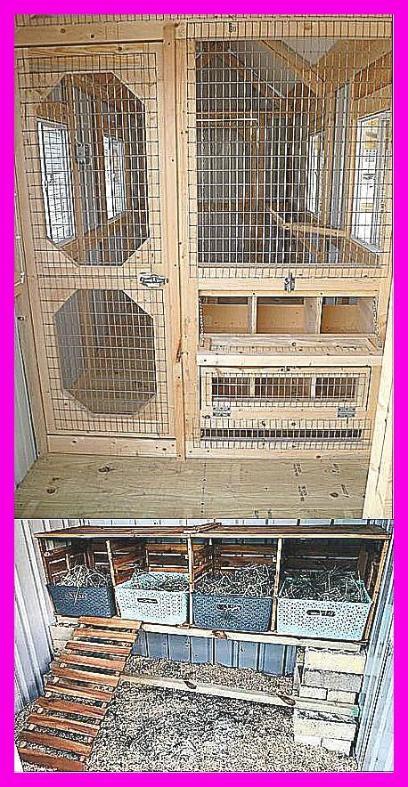 Fancy Farmhouse DIY Chicken Coop Reveal  Southern Revivals Inside view of coop Inside view of coop weddingtables