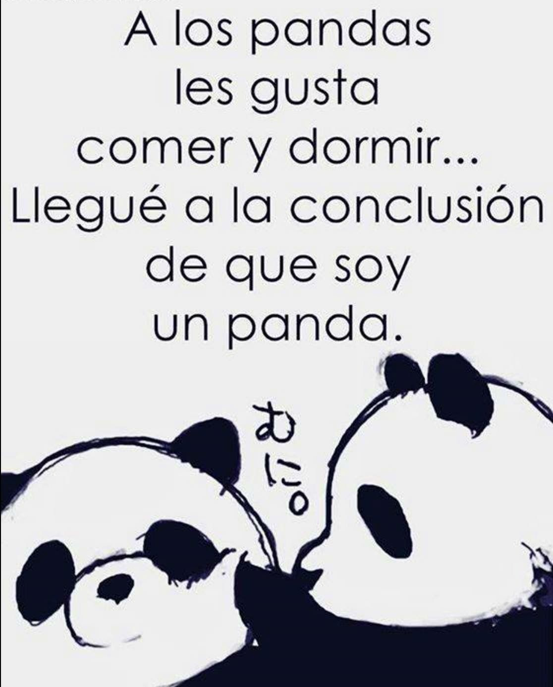 Panda Quotes A Los Panda Les Gusta Comer Y Dormir Llegue A La Conclusión De Que