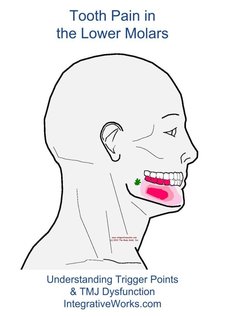 776673f6bac42d3fd0c2ae46c0f2f49a - How To Get Rid Of Tooth Pain From Sinus Pressure