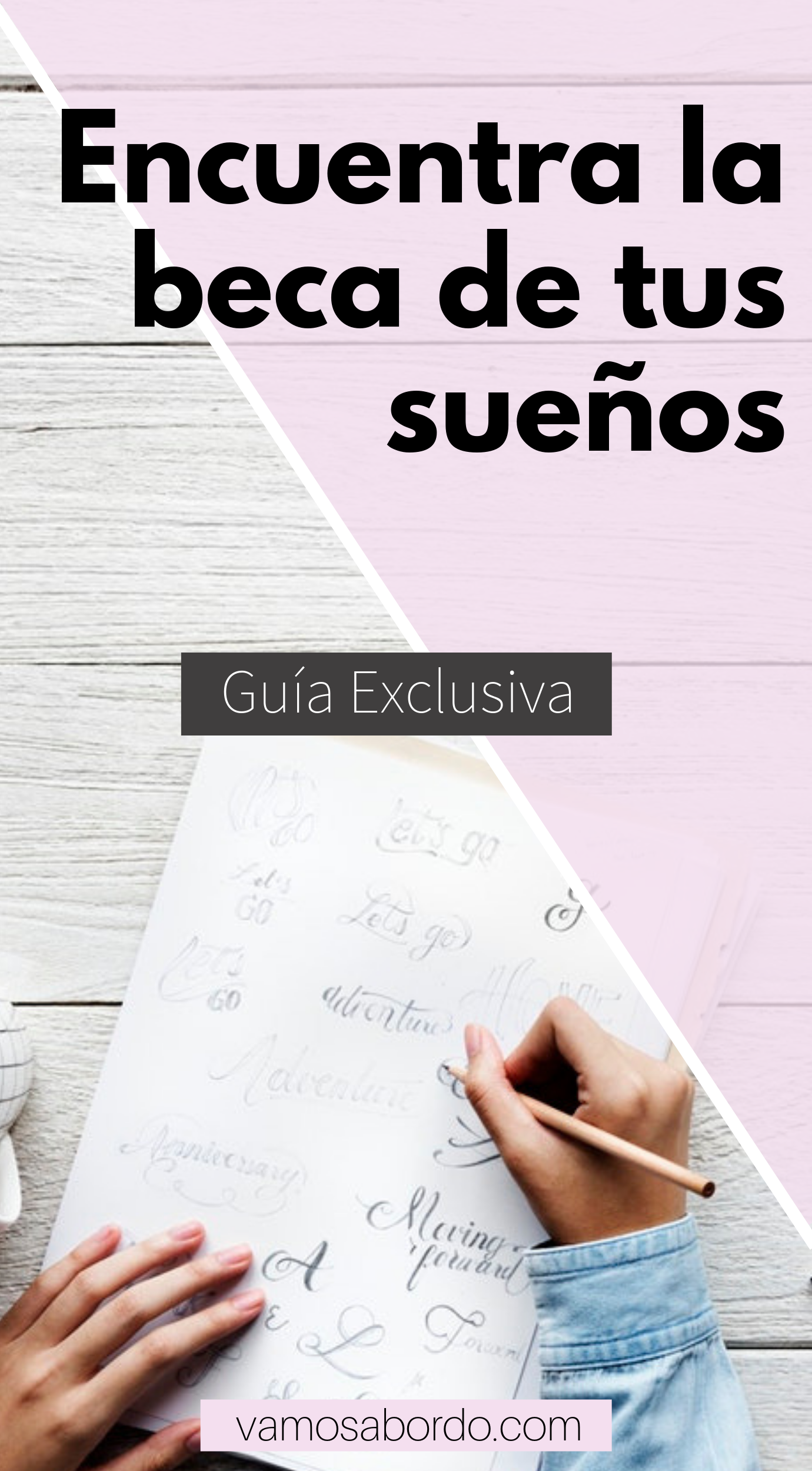 Becas Para Latinoamericanos 2021 Guía Oficial Vamos A Bordo Carreras Para Estudiar Becas Universitarias Cartas De Motivacion