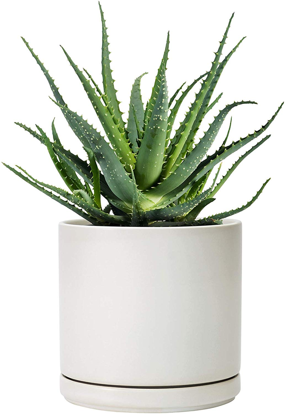 Amazon Com Set Of 3 6 Inch 8 Inch 10 Inch Matte White Grey Ceramic Planter Pot With Saucer Ceramic Ceramic Planter Pots Ceramic Planters Planter Pots