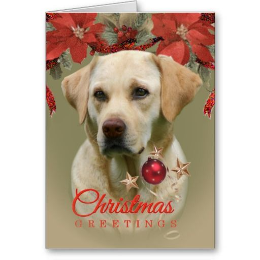 Yellow Lab Christmas Greetings Cards Zazzle Com