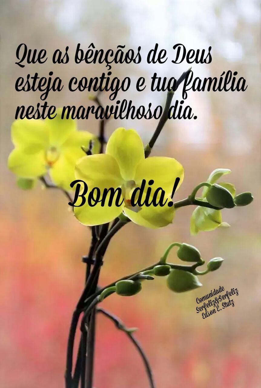 Que As Bencaos De Deus Esteja Contigo E Tua Familia Neste