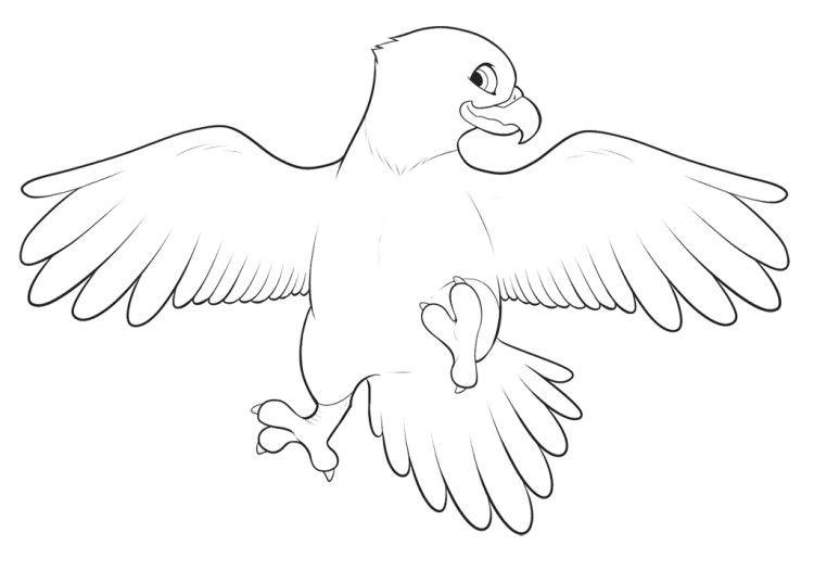 Cute Baby Eagle Coloring Pages