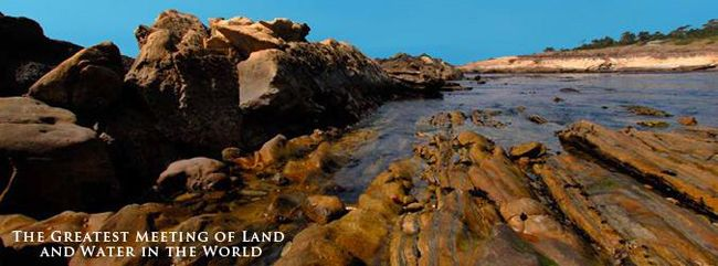 Point Lobos State Reserve Directions | Point Lobos State Reserve 2A 11:00 Magnificent Ocean Views ...