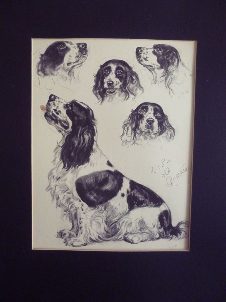 "Hand Drawing Signed Artwork Of A Black And White Dog ""Queenie"" #Vintage"