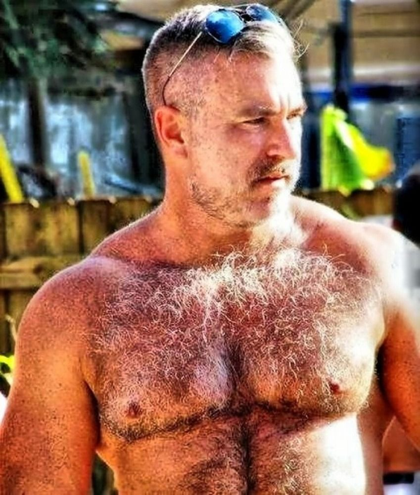 Hung hairy daddies