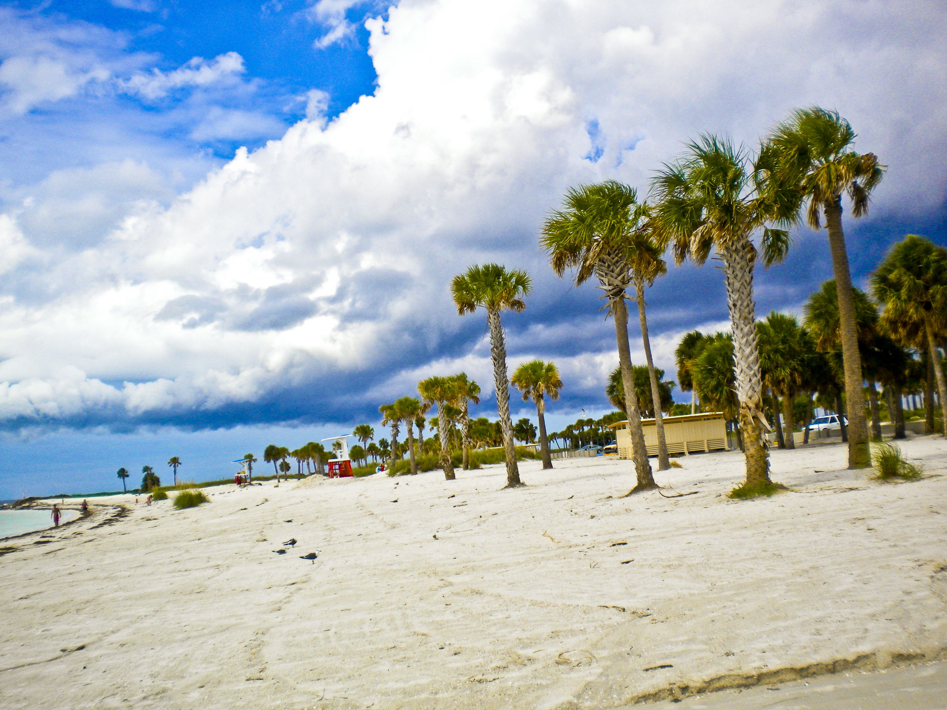 Tarpon Springs Florida This Is At Fred Howard Park I Love Beach