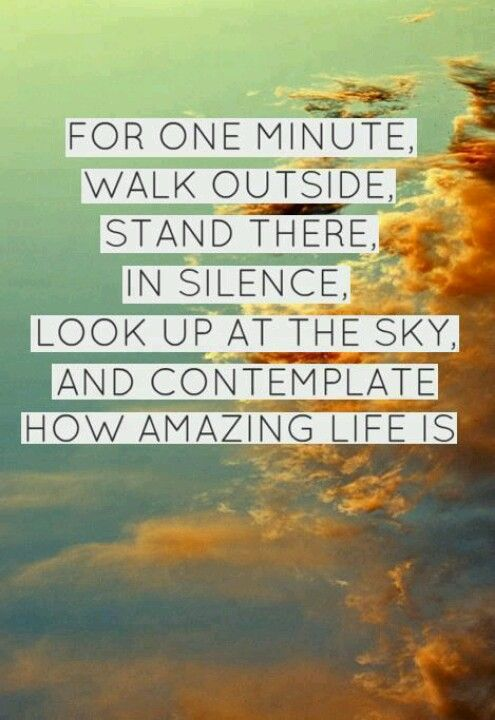 For one minute, walk outside, stand there, in silence, look up at the sky, and conteplate how amazing life is.
