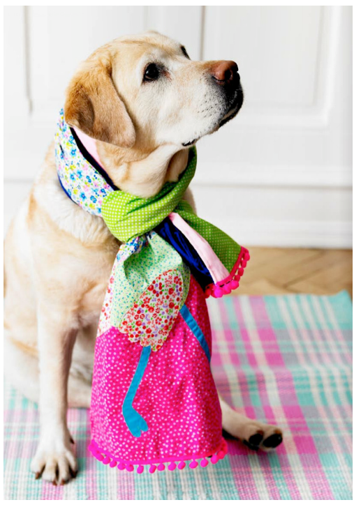 Spoonflower needs to start a new pet apparel line!
