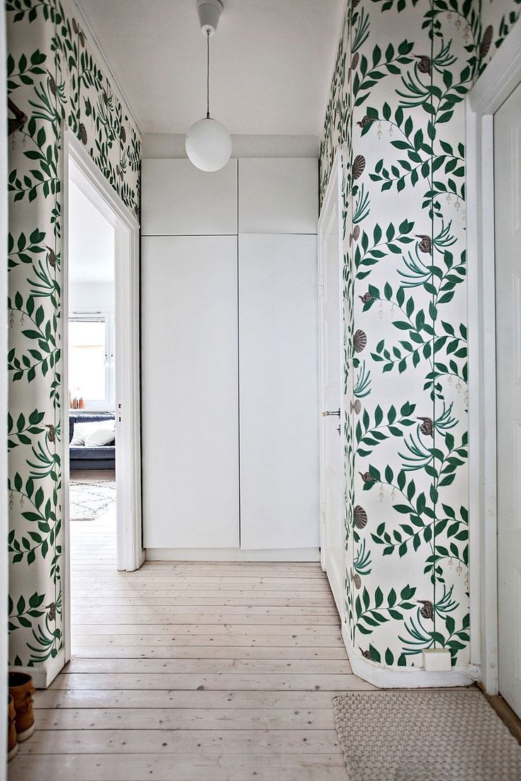 Wallpaper on hallway  fresh green whimsical wallpaper hallway  room of the week on coco