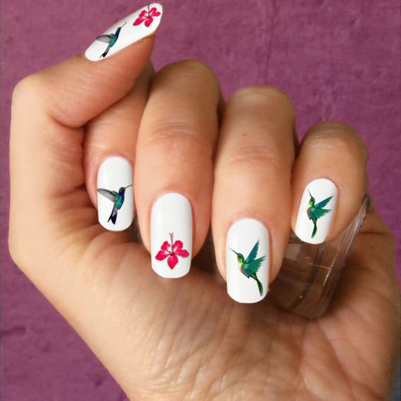 Hummingbird Nail Art Nail Decals Humming Bird Nail Art Birds