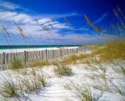 Florida  ☼