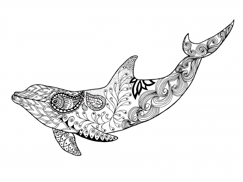 Dolphin Coloring Page Underwater Adult coloring and Crayons