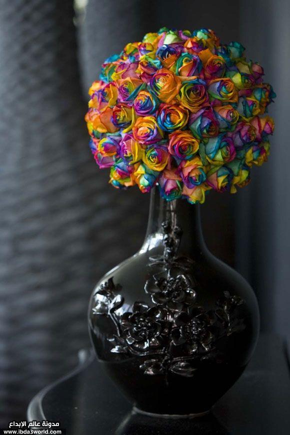 زهور قوس قزح جمال الزهور وبهاء قوس قزح عالم الإبداع Rainbow Roses Colorful Roses Bridal Bouquet