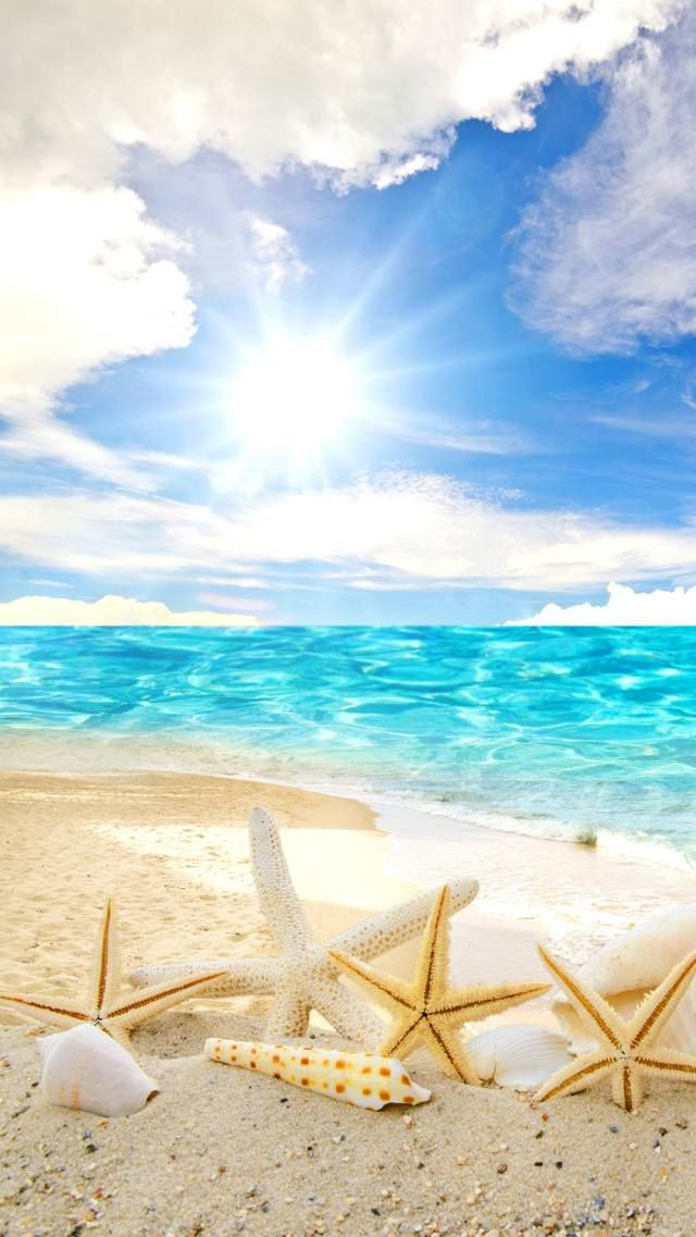 Zedge Free Downloads For Your Cell Phone Free Your Phone Beach Wallpaper Summer Wallpaper Beautiful Wallpapers