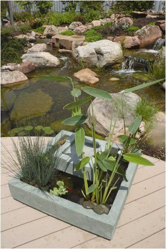 Deck Pond Square By Aquascape (includes Water Pump) By Aquascape. $317.98.  Light