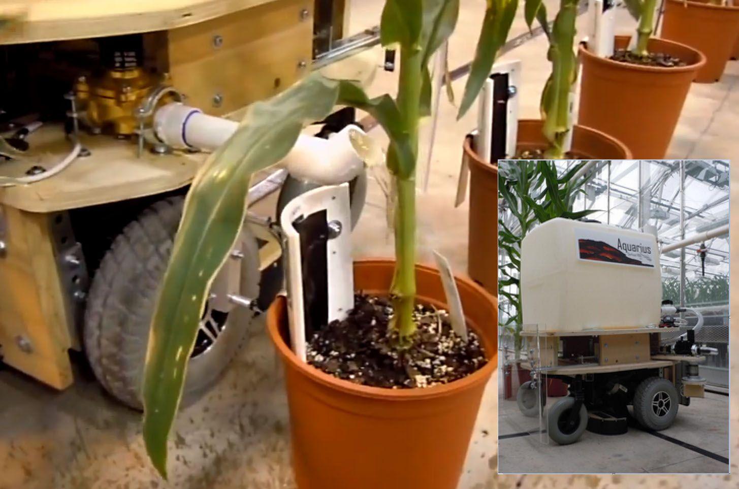 mobile greenhouse on wheels - Google Search   gardening   Pinterest ...
