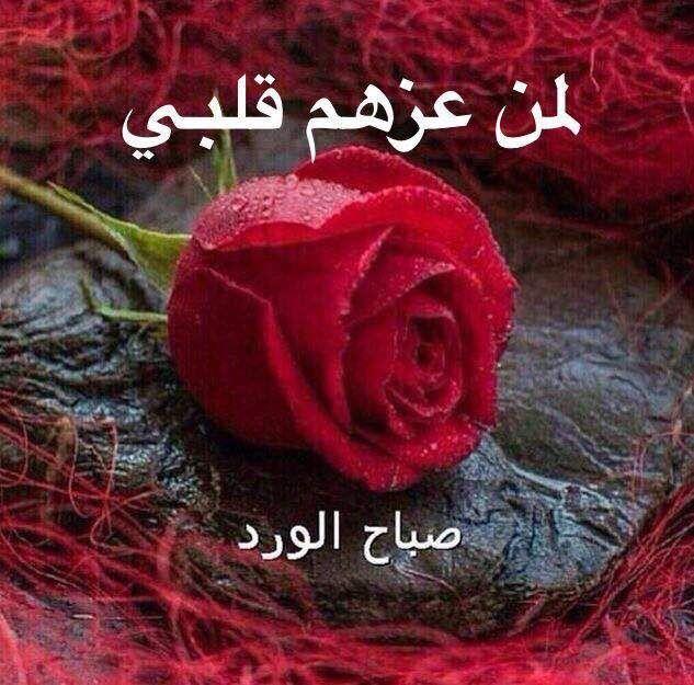 Pin By Faisal English On صباح الخير Good Morning Good Morning Flowers Templates Printable Kids Morning Greeting