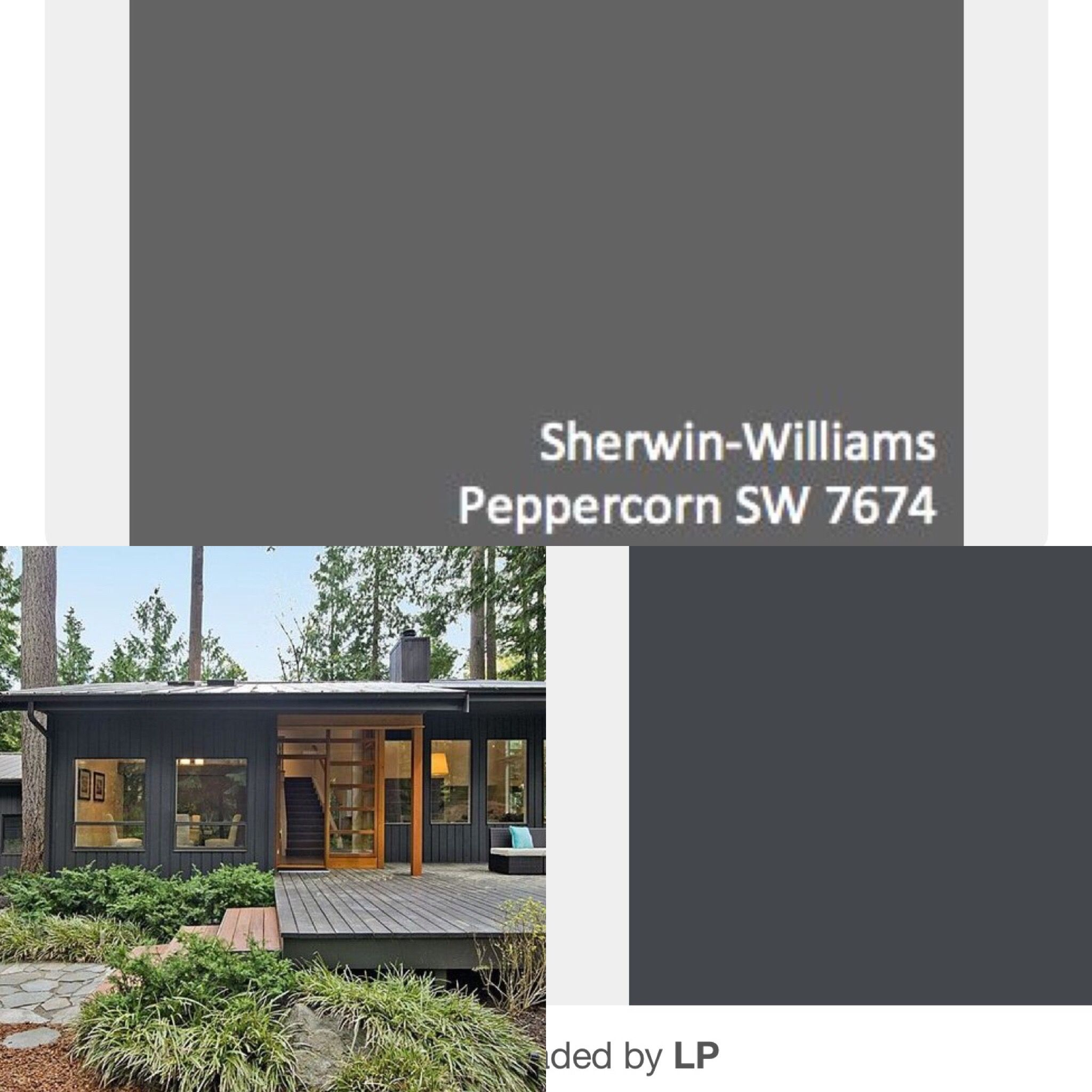 Cyberspace And Peppercorn By Sherwin Williams For The Adu