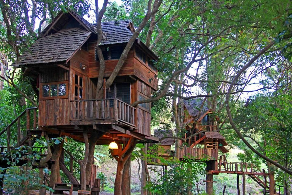 6x Inspirerende Boomhutten : Treehouse at the rabeang pasak chiangmai treehouse resort in