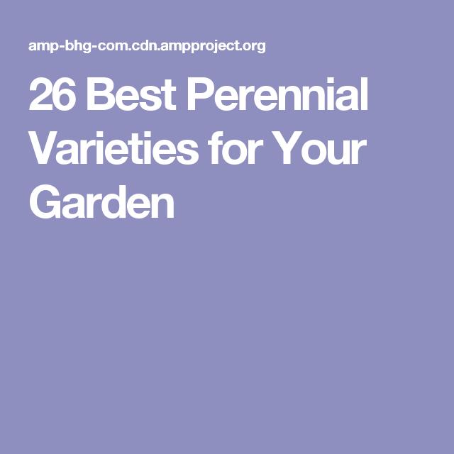 26 Best Perennial Varieties for Your Garden
