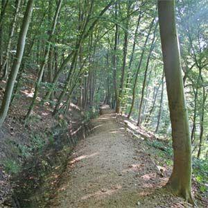 Wandel langs de Helbeek op de St. Jansberg