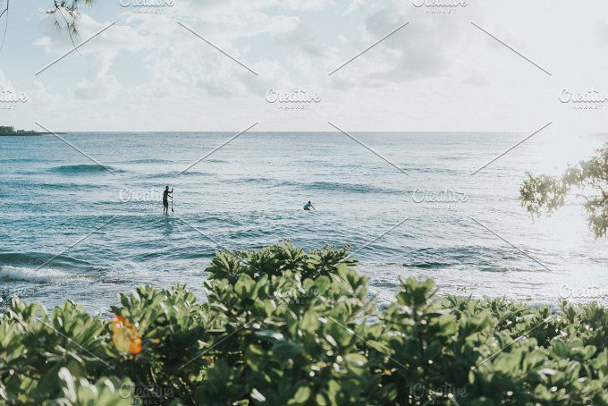 Paddle Boarding in Hawaii by erikaoverholt on @creativemarket