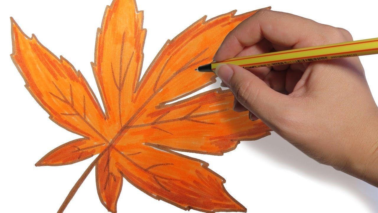 Como Dibujar Hojas De Arboles De Otoño Facil Paso A Paso A Lapiz Hojas De Otoño Dibujo árboles En Otoño Como Dibujar Una Hoja