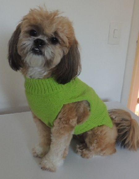 Roupinha de cachorro de lã personalizada   Pets Roupas e Acessórios ...