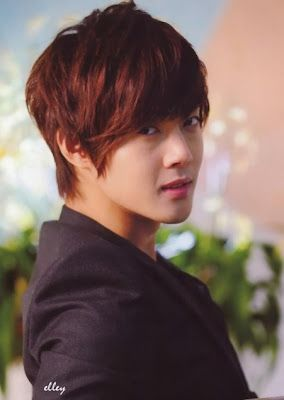 Kim Hyun Joong Boys Over Flowers Playful Kiss City Conquest SS501