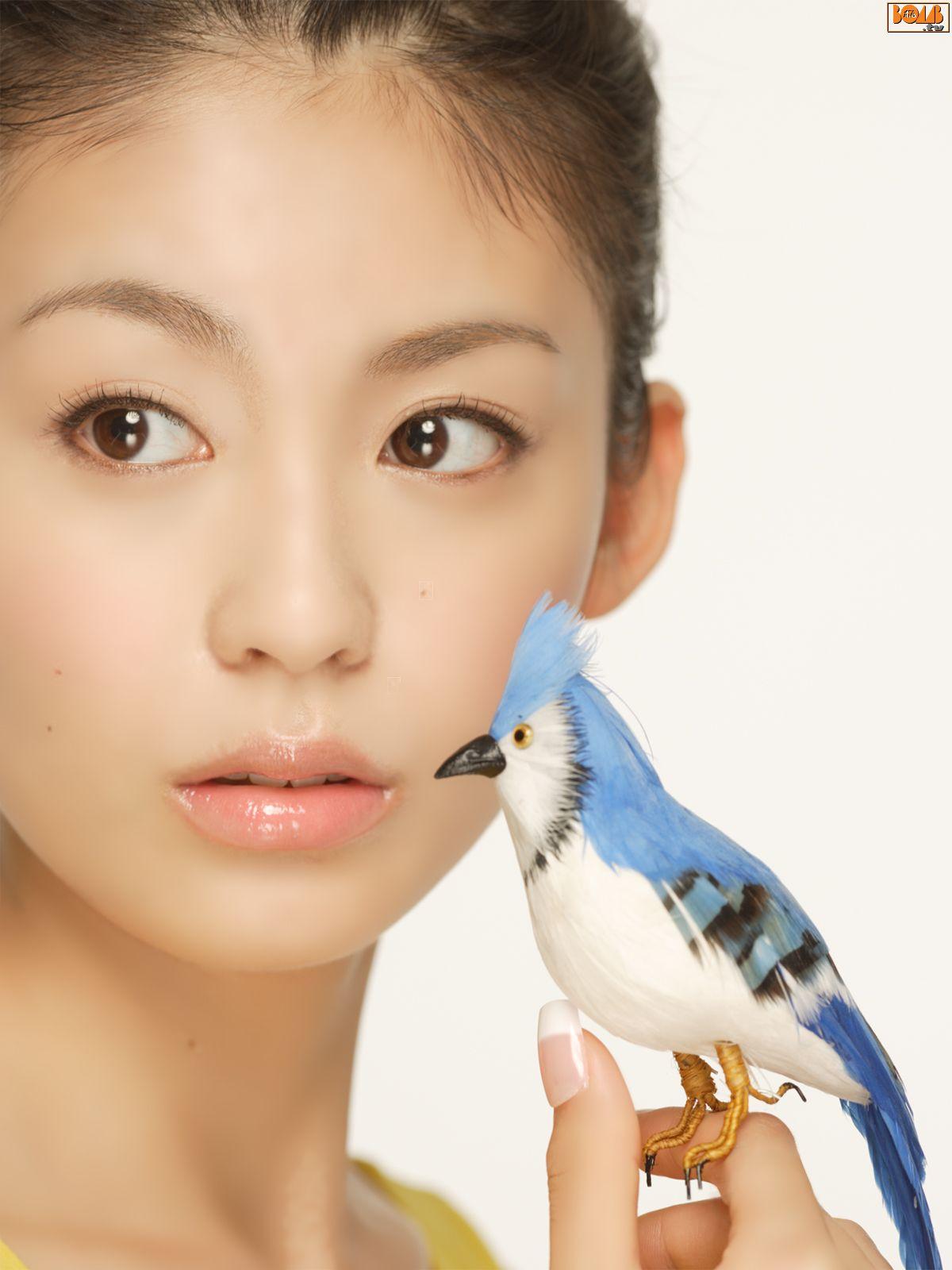 Nose piercing for big nose  Wallpaper  Art  Pinterest  Wallpaper Pretty girls and Asian