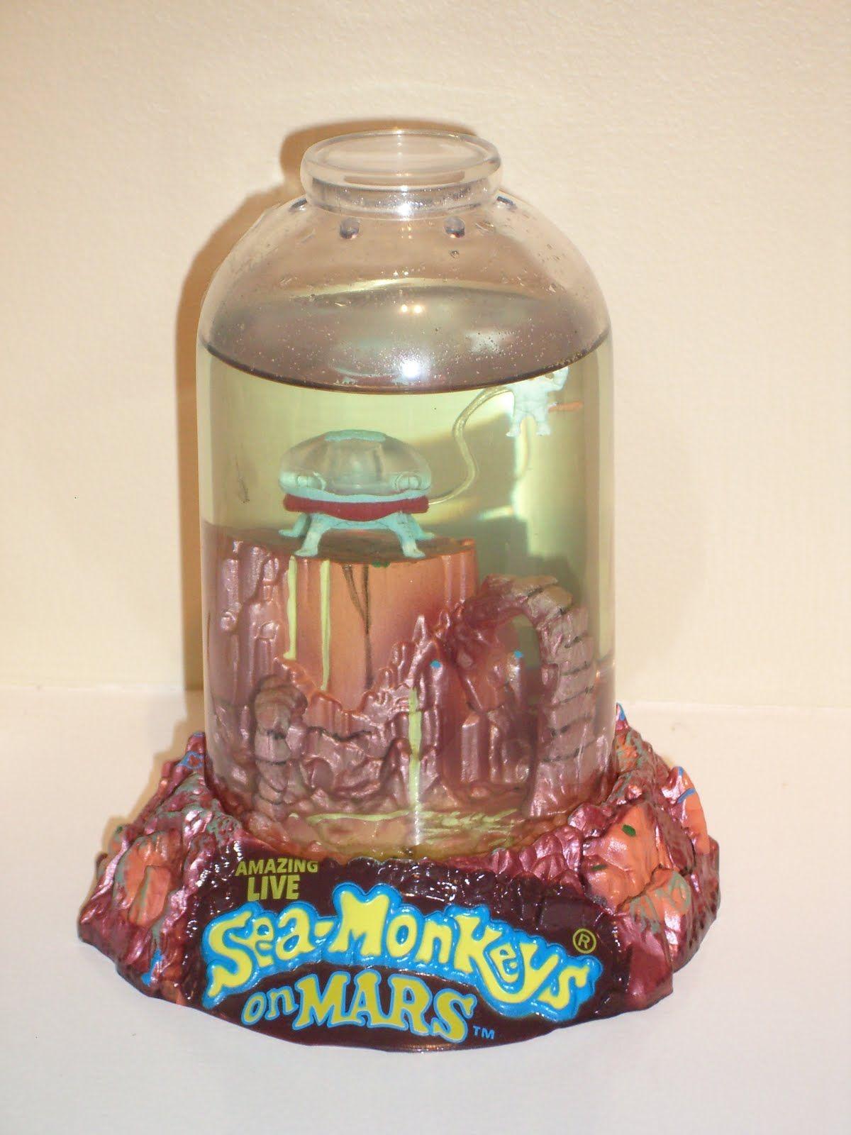 Sea Monkeys Sea Monkeys Sea