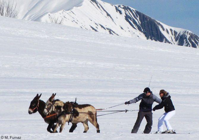 La station d'Albiez-Montrond offre un domaine skiable familial de 35 km.  Sur un plateau ensoleillé au pied des majestueuses Aiguilles d'Arves, Albiez Montrond offre un cadre incomparable pour la pratique du ski débutant mais également quelques belles pistes techniques sur fond panoramique.