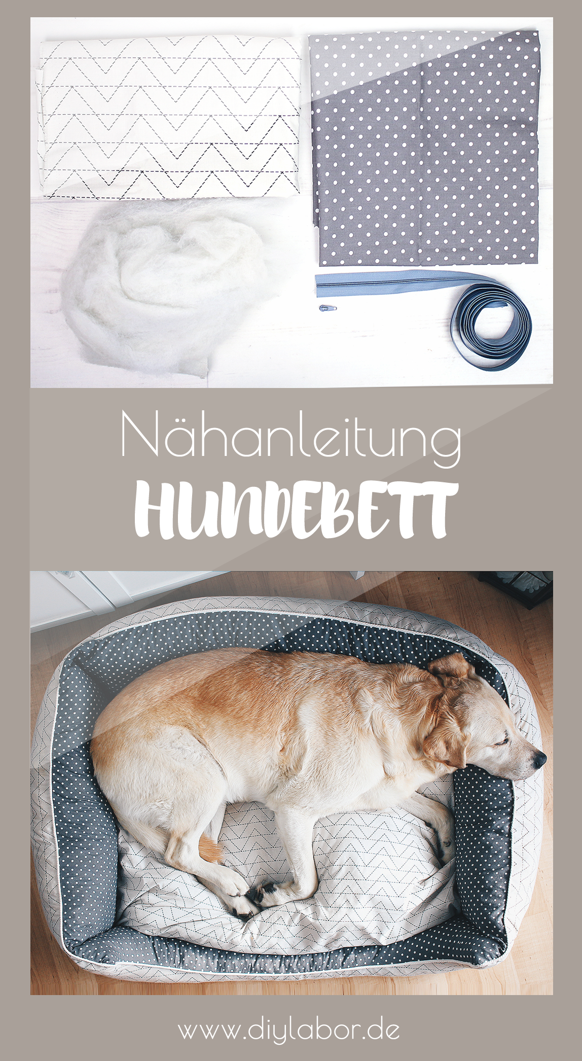 Photo of Sewing dog bed / DIY instructions